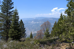 Kings Canyon View - Converse Basin - Sequoia National Forest - Fresno County - California - 04 May 2013 (goatlockerguns) Tags: california county usa mountains west forest nevada basin sierra national fresno converse western sequoia 2013
