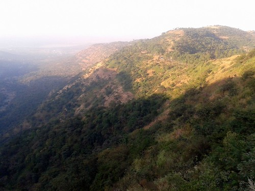 Near Sinhagad Fort on Sinhagad Ghat Road, Pune, Maharashtra