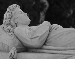Túmulo de la Familia Moreu Mirasol, 1881 (PhotoLanda) Tags: andalucia andalusia andalusien cementeri cementerio cementeriodegranada cementeriodesanjose cementeriomunicipaldegranada cemetery cimetière cimetiere granada panteon graves tombs cemeteries death muerte κοιμητήριον ataud emucesa friedhof europa europe andaluzio andaluzia أندلوسيا andaluz grave tomb cemeterie hiciacetpulviscinisnihil pulviscinisnihil rutaeuropeadeloscementerios asce associationofsignificantcemeteriesineurope art history andalouzia andalusie andalusiya architecture polvocenizanada ayuntamientodegranada sabica paseodelasabica camposanto arquitectura アンダルシア 安達魯西亞 الأندلس 安达卢西亚 安達盧西亞 andalucía exitusletalis aquiyacepolvocenizanada andaluzja グラナダ アンダルシア州 empresamunicipaldecementerioyserviciosfunerariosdegranada empresamunicipaldecementerioyserviciosfunerariosdegranadasa андалузија اندلس منطقةحكمذاتيالأندلس منطقةالأندلسذاتيةالحكم אנדלוסיה ანდალუსია แคว้นอันดาลูเซีย আন্দালুসিয়া ανδαλουσία andalousie alandalus fujifilmxpro1 photolanda