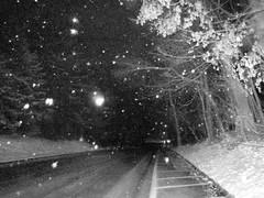 (William Keckler) Tags: winter blackandwhite snow night dark december nocturnal pennsylvania snowy nieve neige vision:outdoor=0928