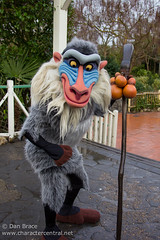 Rafiki (Regular)