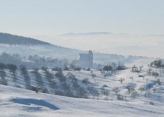 téli reggel Harinán / winter morning in Mönchsdorf