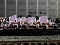 Hiena (Revise_D) Tags: train graffiti tracks trains revise graff tagging freight revised hiena trainart fr8 bsgk syw fr8heaven fr8aholics revisedesigns revisedesign fr8bench benchingsteelgiants