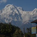 Annapurna South and Himchuli from Pitam Deurali thumbnail