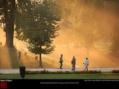 Srinagar_Garden_Nishat-130929-026 (qlin zhang) Tags: india garden kashmir srinagar nishat 克什米尔 heritagemughalgardennishat 爱的花园