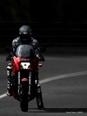 Ninja Legacy (Goodhal Garage) Tags: ninja kawasaki touristtrophy manandmachine zx900