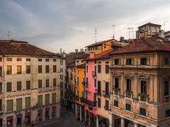 Vicenza, Italy (Mia Battaglia photography) Tags: vicenza camera:make=olympus exif:focallength=15mm exif:aperture=ƒ80 exif:make=olympus exif:lens=olympusm1240mmf28 exif:isospeed=1000 exif:model=em5markii camera:model=em5markii