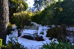 Mt.Victoria Brother's Retreat 036