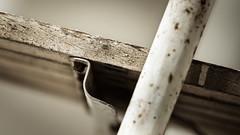 Solid Tool. (Sylvie.) Tags: vintage solid tool ladder meetingthewall sylvie peeters sony ilce6000 a6000 mechelen belgië belgium work old heavy wood ijzer 90mm