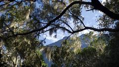 Hiking up to the mountains Piton des Neiges (highest mountain of Réunion) (GötzD) Tags: réunion france piton des neiges randonnée trekking hiking hike trek landscape view mountains