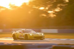 #3 Garcia-Magnussen-Rockenfeller CorvetteRacing ChevroletCorvetteC7R-9 (rickstratman26) Tags: corvette c7r c7 racecar racing car cars racecars sebring motorsport motorsports sunset golden hour chevy chevrolet panning imsa