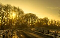 Light and Shadows. (Alex-de-Haas) Tags: 50mm d5 dutch hdr january nederland nederlands netherlands nikkor nikkor50mm nikon nikond5 noordholland thenetherlands warmenhuizen westfrieseomringdijk bevroren cityofwarmenhuizen cold daglicht daylight frozen gevroren handheld highdynamicrange icy januari koud landscape landschap licht light overdag polder polderlandschap sun sunray sunrays sunbeams sunny sunrise winter zon zonnestralen zonnig zonsopgang
