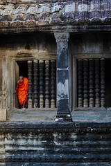 Monk at Angkor Wat, Angkor, Cambodia 2 (Alex_Saurel) Tags: buddhist clothes ancient monk bassin orientation photospecs architecture fullframe bouddhisme imagetype fullbody moine portrait garden religion pleinformat portray cambodge stockcategories photoreportage people buddhism archicategory kesa weather reportage man photojournalism portraiture traditional style planpied photoreport vertical nature scans adult time tradition type religieux pond asia temple culture day sunset planitalien travel detail sony50mmf14sal50f14
