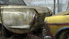 Auto (11) (Bettina.Gerstb.) Tags: scrapyard cars rust motorcycles vintagecars schrottplatz oldtimer rost motorrad autos