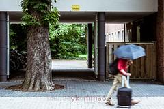 Ausfahrt Freihalten! (blende9komma6) Tags: hannover nordstadt germany ausfahrt freihalten kodak kodachrome nikon d7100 slip road umbrella regenschirm baum tree street urban life
