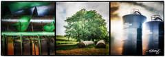 Down On The Farm_Color (dougkuony) Tags: triptych noblepastures organicfarm farm farmscenes hdr