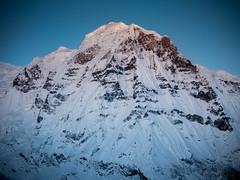 Annapurna South Peak, the Himalayas, Nepal (CamelKW) Tags: abc annapurnabasecamptrek annapurnaregiontrek annapurnasanctuary fishtail kathmandu mbc machapuchare machapucharebasecamp nepal pokhara trekking annapurnasouthpeak thehimalayas