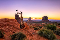Good Morning! (KPortin) Tags: monumentvalley themittens butte mesa raven tree rocks