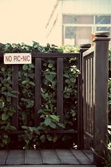 No picnic (eleanorigby994) Tags: picnic no divieto