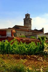 La Granada del Penèdes. (Angela Llop) Tags: spain eu catalonia vineyards penedes tourismuspenedes wlmipa2696
