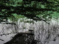 Lac sur la route des cascades