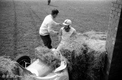 Race marshals assist Frank Gardner after he crashed his Brabham BT2 Ford at Tatts corner Aintree, April 1962. (Montii41) Tags: liverpool crash motorracing aintree brabham formulajunior brabhambt2 frankgardner aintree200