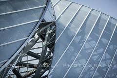 Mechanics (Cyrille Bailly) Tags: paris architecture canon design architect frankgehry bleachbypass ef135mmf2lusm eos5dmarkii fondationlouisvuitton