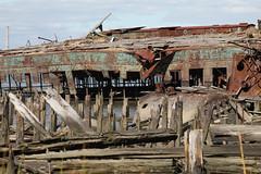 Witte Marine Scrapyard (JuliaWertz) Tags: abandoned ruins urbanexploration statenisland urbanexploring ue urbex rossville warships arthurkill abandonedboats tugboatgraveyard abandonedships statenislandboatgraveyard wittemarineshipyard