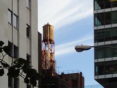 water tower at sunset (simply innocuous) Tags: nyc sunset sky streetlight streetlamp watertower greenglass