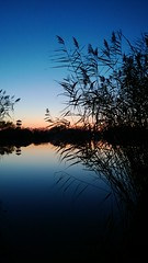 WP_20131116_16_47_49_Pro (Detkodave) Tags: sunset lake reflection nature mobile zeiss photography nokia lowlight hungary