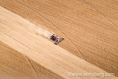 aerial of soybean harvest in Kent County MD (Remsberg Photos) Tags: usa tractor fall horizontal farm farming harvest maryland aerial combine ag agriculture rockhall soybeans harvesting bountiful agriculturethings
