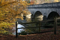 The Five-Arch Bridge (haberlea) Tags: bridge autumn lake tree water leaves fence virginiawater virginiawaterlake