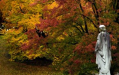 "Cincinnati – Spring Grove Cemetery & Arboretum ""A Walk Through Autumn"" (David Paul Ohmer) Tags: ohio cincinnati spring grove cemetery arboretum springgrovecemetery gravesites burial grounds death spirit soul deceased graveyard conservatory victorian gothic revival national historic landmark adolph strauch cemetary autumn fall foliage springgrove springgrovecemetary seasons color leaf leaves leaflet"