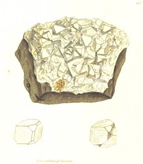 Image taken from page 60 of 'British Mineralogy: or coloured figures intended to elucidate the mineralogy of Great Britain. By J. Sowerby (with assistance). F.P' (The British Library) Tags: bldigital date1804 pubplacelondon publicdomain sysnum003450252 sowerbyjames medium vol05 page60 mechanicalcurator imagesfrombook003450252 imagesfromvolume00345025205 mineral crystal sherlocknet:tag=specimen sherlocknet:tag=crystal sherlocknet:tag=quartz sherlocknet:tag=earth sherlocknet:tag=lime sherlocknet:tag=carbon sherlocknet:tag=whole sherlocknet:tag=right sherlocknet:tag=spec sherlocknet:tag=appear sherlocknet:tag=calcareous sherlocknet:tag=iron sherlocknet:tag=figure sherlocknet:tag=various sherlocknet:tag=hand sherlocknet:tag=oxide sherlocknet:tag=form sherlocknet:tag=mica sherlocknet:tag=mass sherlocknet:category=objects