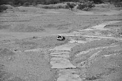 allá, lejos de todo (quino para los amigos) Tags: argentina alone solo soledad salta dsc0360