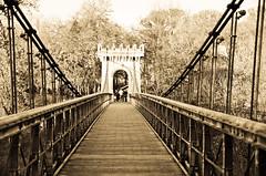 Suspended Bridge (dccalin05) Tags: bridge romania craiova suspendedbridge outstandingromanianphotographers ringexcellence dblringexcellence tplringexcellence romanescuparc romanescubridge