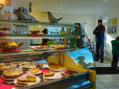 seals and cakes (watcher330) Tags: man reflection cakes cafe seal llangrannog