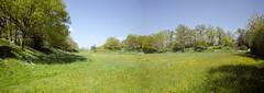 Camp de Beugy, le camp de Guillaume le Conqurant - William the Conqueror's field (Selbymay) Tags: camp williamtheconqueror guillaumeleconqurant mayenne saintesuzanne beugy