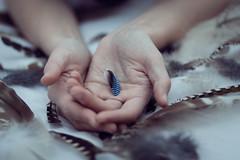 28/100 (foufinhaphoto) Tags: closeup hands feathers foufinha vision:food=0725