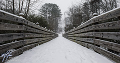 Logan Farm Park Trail - Acworth, GA (Kyle Hess Photography) Tags: park snow lines ga kyle georgia photography town nikon snowy farm s trail f snowing 28 af logan nikkor f28 hess 2470mm acworth d3s