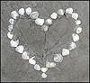 Heart of mine ! (Sidsel Oba) Tags: love beach strand hearts sand heart shell valentine lovely valentin hjerte skjell hvite