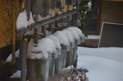 "DSC_0061 (Lynette_1_2_3) Tags: ""cold weather"" ""snow"" ""wind"" ""february ""©portlandoregondailyphoto 2014"""