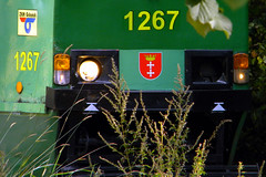 105Na - brak arwki (3x105Na) Tags: tram gdask tramwaj konstal owietlenie 105na arka