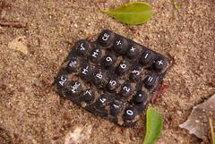 Natural computing (Eric Vernier) Tags: eric vernier no filter brasil rio janeiro decay pollution calculus computer sand broken nofilter