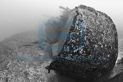 2011 04 BARATHIEU Réunion 7534
