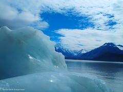 Tasman Glacier + Icebergs (metservice.nz) Tags: lake ice glacier iceberg tasman