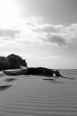Canon EOS 60D - At the Beach - Washed up on the Beach (TempusVolat) Tags: sea blackandwhite bw sun sunlight white black slr beach girl monochrome strand digital canon pose geotagged eos mono coast seaside sand dune norfolk wells dslr sanddune canoneos gareth watchers watcher tempus holkham wellnextthesea blackandwhitephotograph 60d wellsnexttosea volat canoneos60d eos60d wellnexttosea wonfor mrmorodo garethwonfor tempusvolat