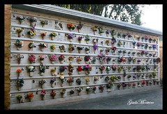 (Gisela_Monteiro) Tags: venice italy cemetery veneza cemitério itália mortsafe
