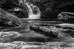 2015-07-Ricketts Glenn-001_flickr.jpg (RobMatthews) Tags: pennsylvania waterfalls rickettsglen