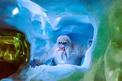 Yeti of the Matterhorn (Kevin MG) Tags: usa orangecounty anaheim disney disneyland dlr matterhorn amusementpark ride yeti monster animatronics